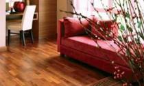 Jak a kde vybrat podlahu do obýváku